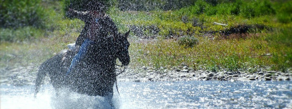 Videos of horseback riding in Jackson Hole Wyoming