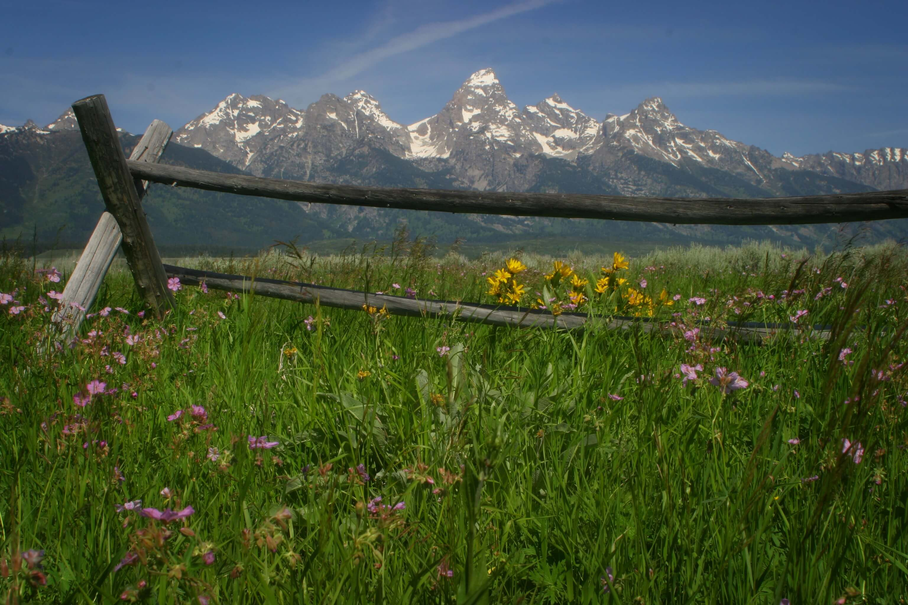 Jackson Hole backcountry
