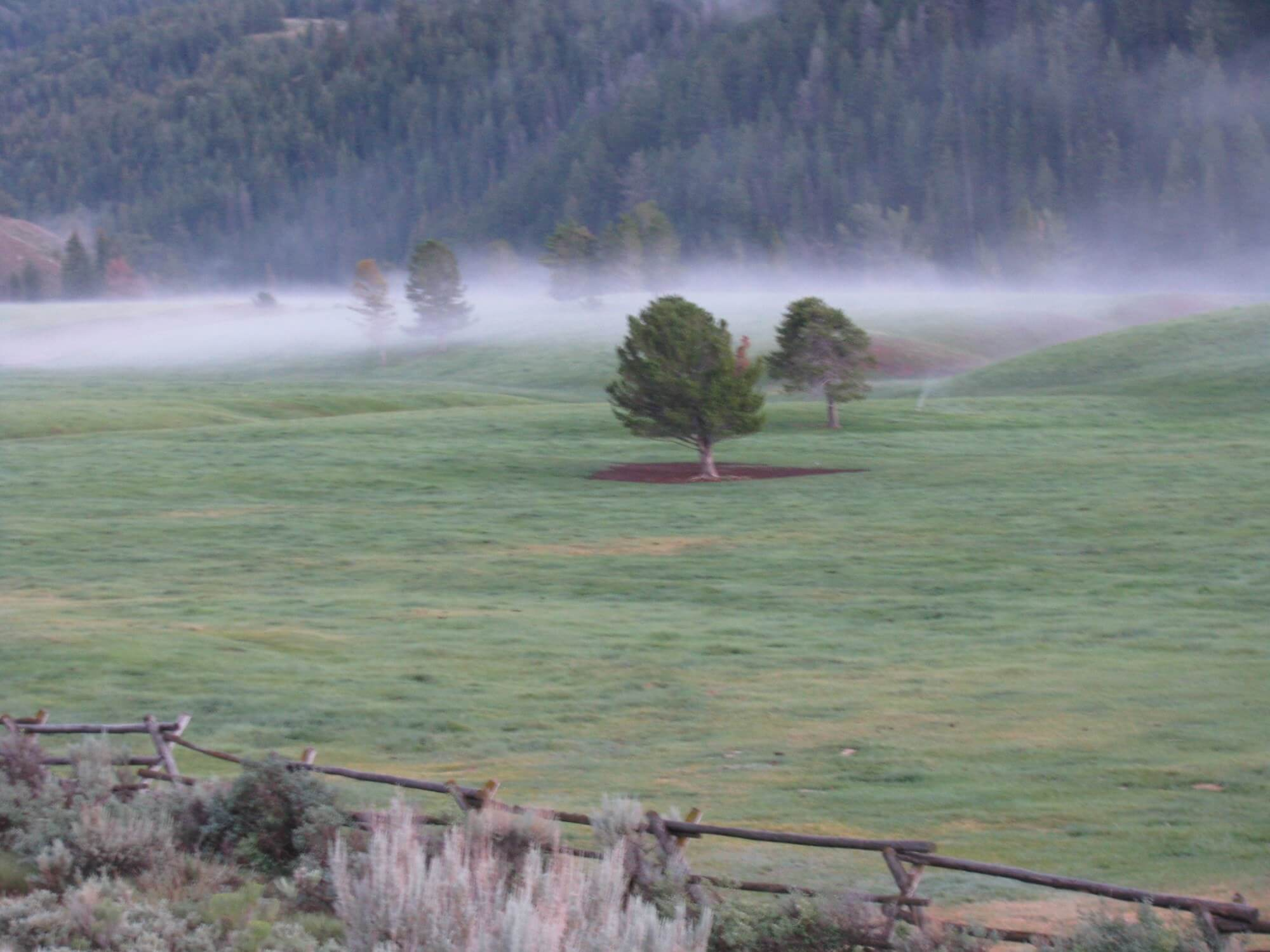 Foggy morning on Goosewing Ranch shows just how varied the weather can be on a Wyoming dude ranch vacation.
