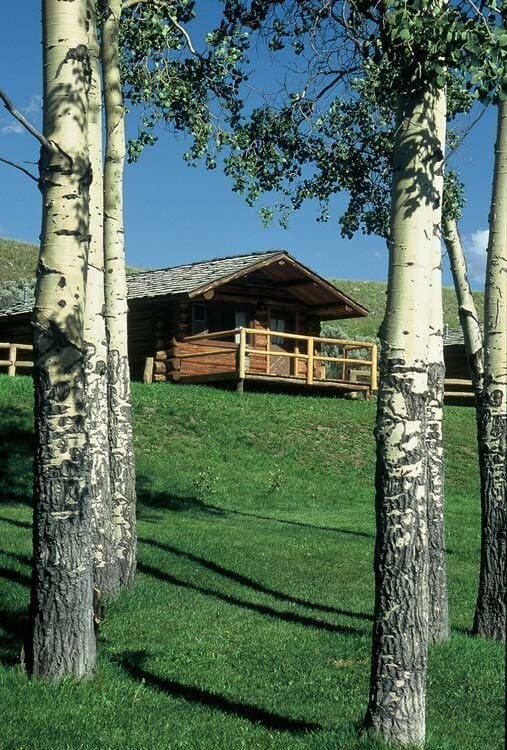 Our 1 and 2 bedroom cabins at Goosewing Ranch can accommodate families of all sizes for a family reunion in Jackson Hole, Wyoming.