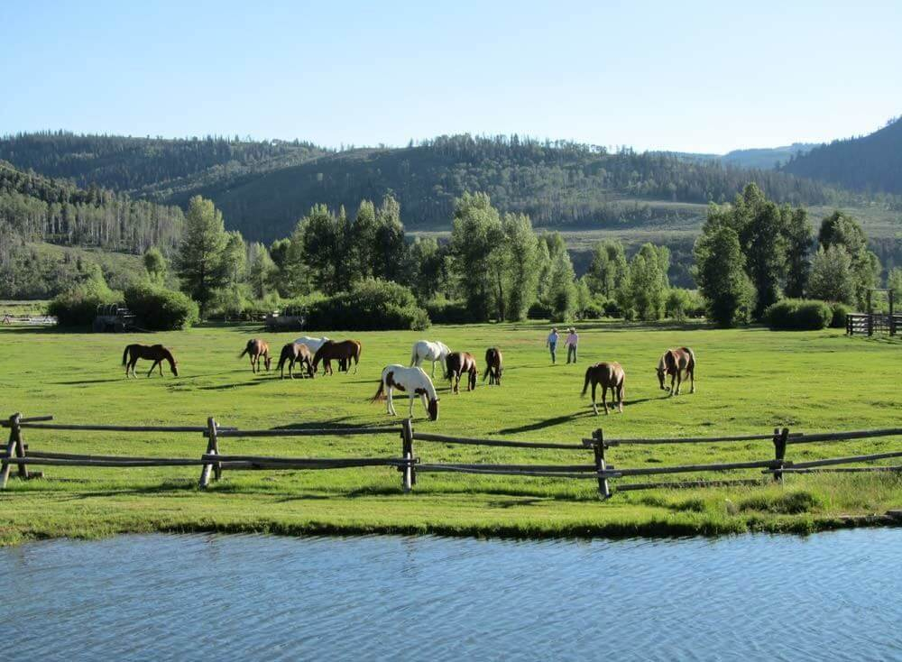Gift Ideas for Travelers: Dude Ranch Vacation at Goosewing Ranch. The 60 horses at the ranch will be ready!
