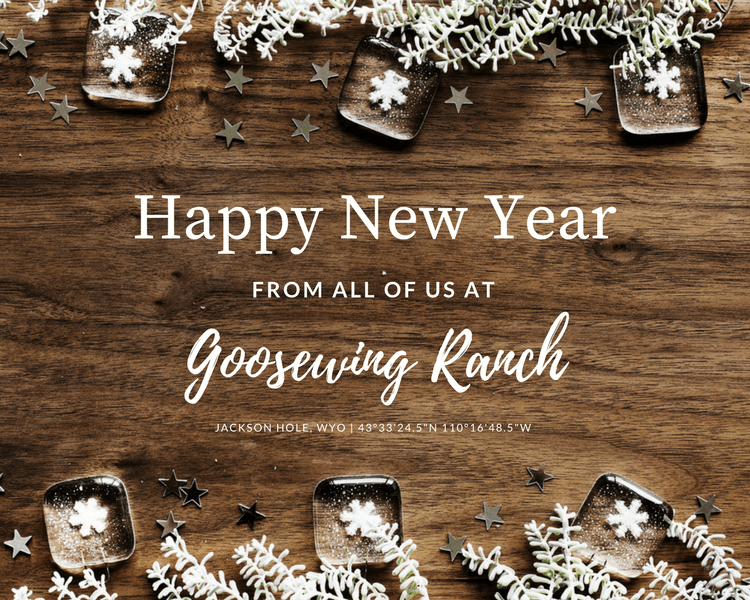 holiday special from Goosewing Ranch to ring in the new year banner