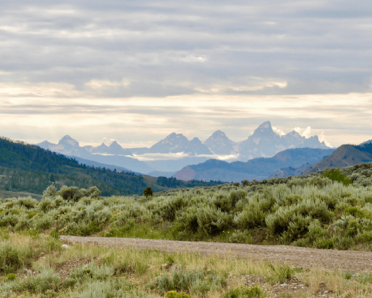 Jackson Hole vacation | Views of the Grand Tetons.
