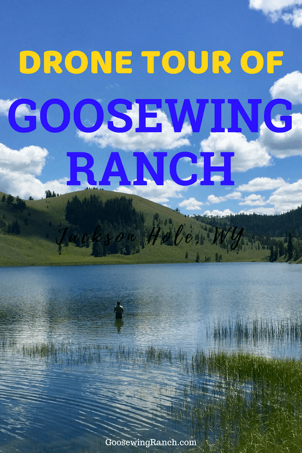 Fly high on this Goosewing Ranch tour with us as we explore the nooks and crannies of the ranch with our drone. Practically hear the breathing of the horses as they lope on trail rides. Feel the wind in your hair as you crest hills in a UTV. See the gorgeous mountain vistas and spectacular Grand Teton views. This is Goosewing Ranch. #duderanch #GoosewingRanch #ThatsWY #JacksonHole #Wyoming