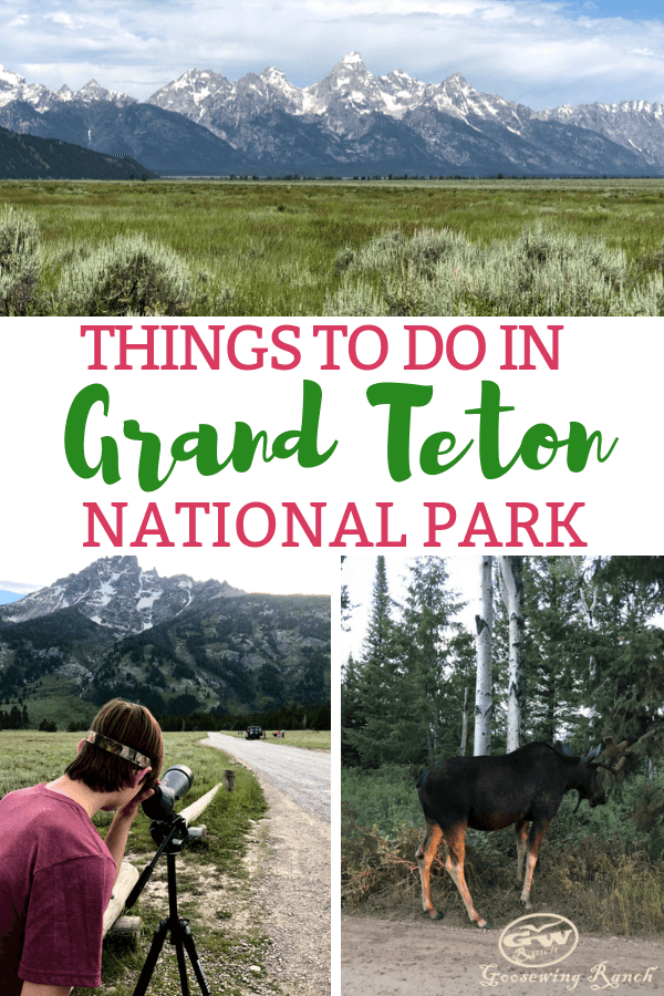 With wildlife and mountains and activities galore, Grand Teton National Park has more things to do than most people have days to visit. Make the most of this national park experience with our guide to all the activities in Grand Teton-from hiking, boating, eye spying for animals, and best photo worthy spots. #GrandTeton #GrandTetonNationalPark #nationalparks #Wyoming #guide