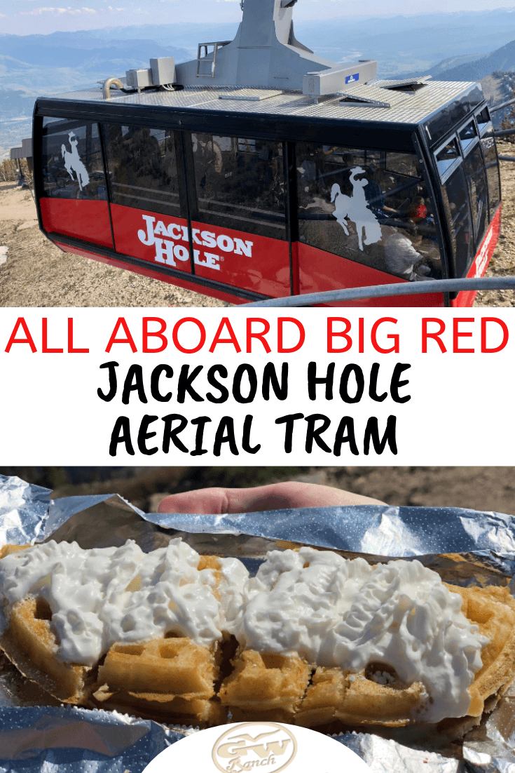What's rectangle shaped, red, and climbs almost 11,000 feet in less than 10 minutes? It's the Jackson Hole Aerial Tram! All aboard Big Red as we learn about the origins of this gliding gondola, how to save money on tickets, and where to find the most delicious waffles in Jackson Hole. #JacksonHole #TetonVillage #aerialtram #BigRed #Wyoming