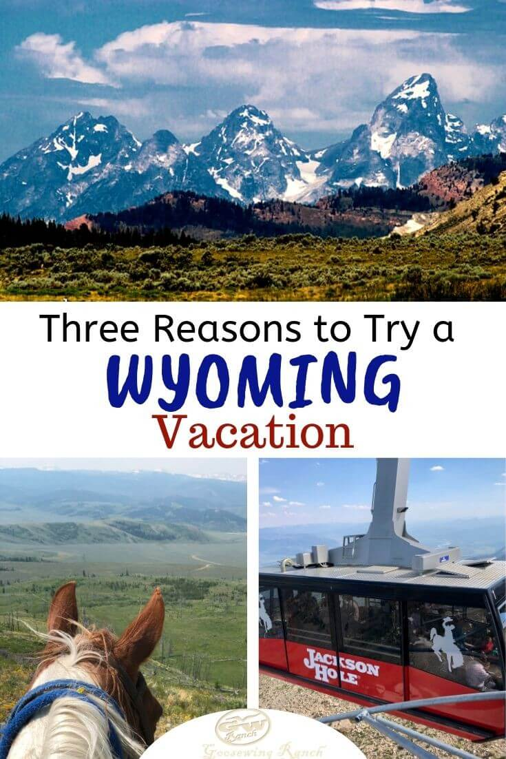 Checking new states off the bucket list? Then Wyoming should be way up there on the priority list. From Jackson Hole's attractions to the nearby national parks and our dude ranch, this is the trifecta of reasons to try a Wyoming vacation. #Wyoming #thatsWY #vacation #duderanch #nationalparks